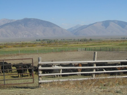 2012 Hoffman Ranch Conservation Easement: 478 acres