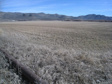 2014 Silver Creek Land Exchange: 31 acres