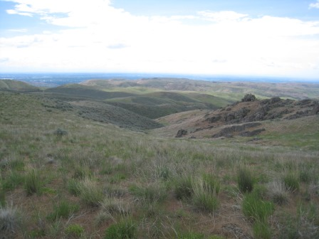 2015 Boise Front Land Donation: 40 acres