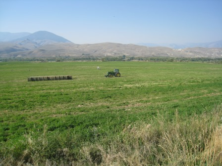 2014 Geertson Creek Conservation Easement: 195 acres